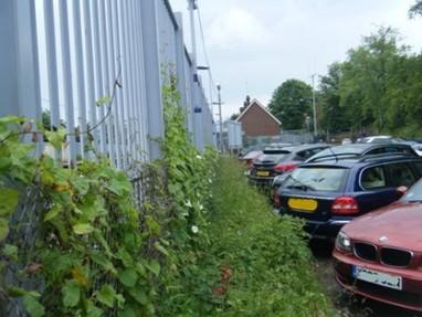 Client geotec car park survey thumb